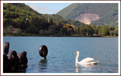 Bed and Breakfast a Bergamo, Lago di Endine